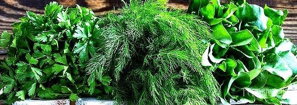 Кілька корисних порад щодо свіжої зелені для приготування запашних та поживних салатів.